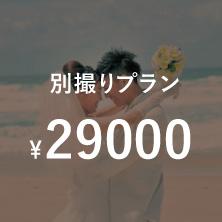 結婚式別撮りプラン¥29000
