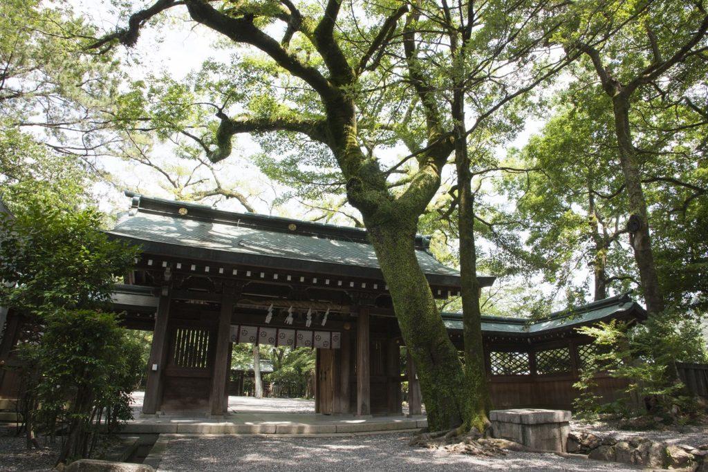 山内神社 カメラマン撮影レポート